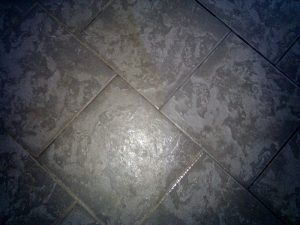 Hawaii Kai Heavy Pet Damaged Stone Tile